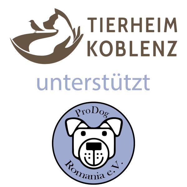 """TierSchutzTaler """"Tierheim Koblenz + ProDog Romania""""-Copy"""